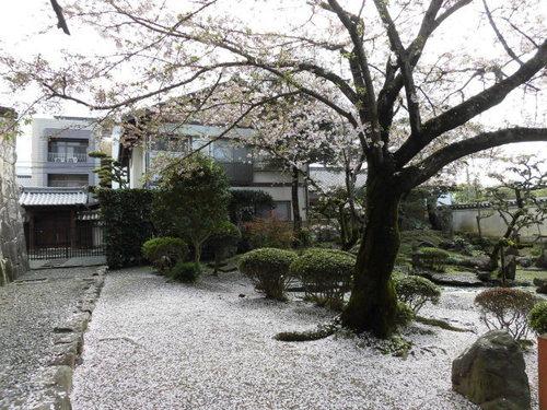 2015-04-03 028.JPG