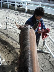 03.08 わたしが乗った馬.jpg