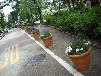 05.14 花の道2.jpg