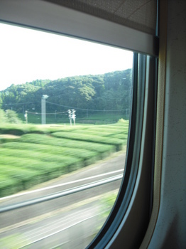 09.05ひかり車窓から.jpg