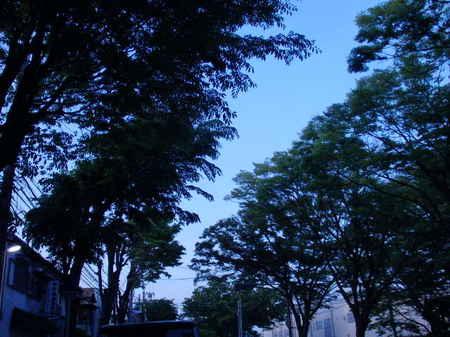 2014-05-09 026.JPG