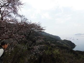 2015-03-29 003.JPG