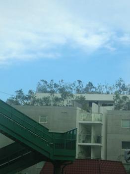 桜の町南の交差点で.JPG